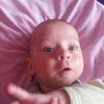 Bebelusul la cinci luni