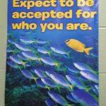 Școala din Rhode Island văzută prin ochii noștri