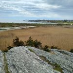 Norman Bird Sanctuary – Aquidneck island